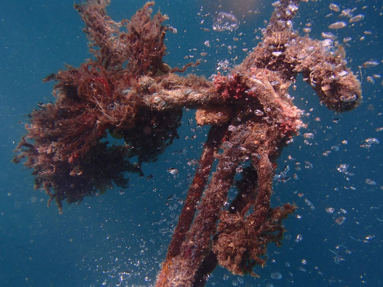 bedreigen voor oceanen